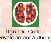 Uganda Coffee Development Agency